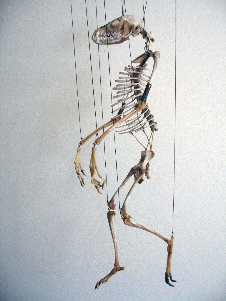 Fox Marionette